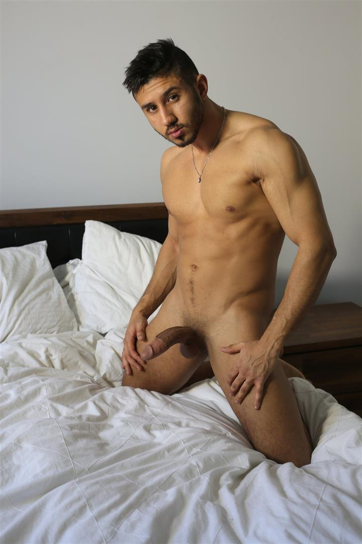 Men of Montreal Malik Big Arab Cock At The Stock Bar Pictures Amateur Gay Porn 12 Young Naked Moroccan Man Jerks His Big Arab Cock